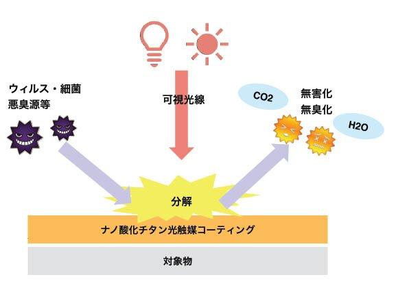 光触媒の抗菌・抗ウィルス効果とメカニズム